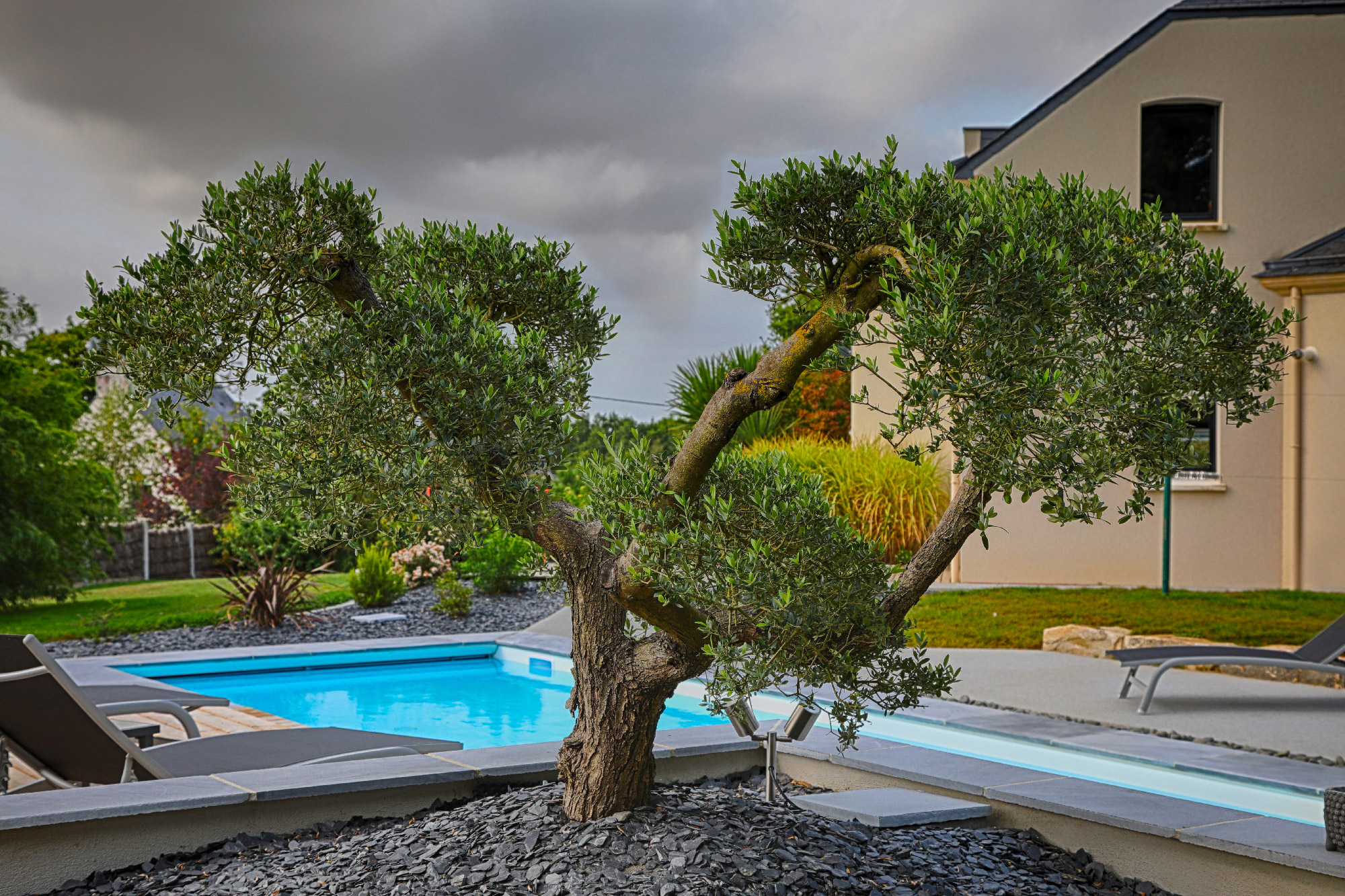 Massif méditerranéen . Jardins des 4 Saisons. Guer, Ploërmel, Redon, Plélan-Le-Grand, Maure de Bretagne