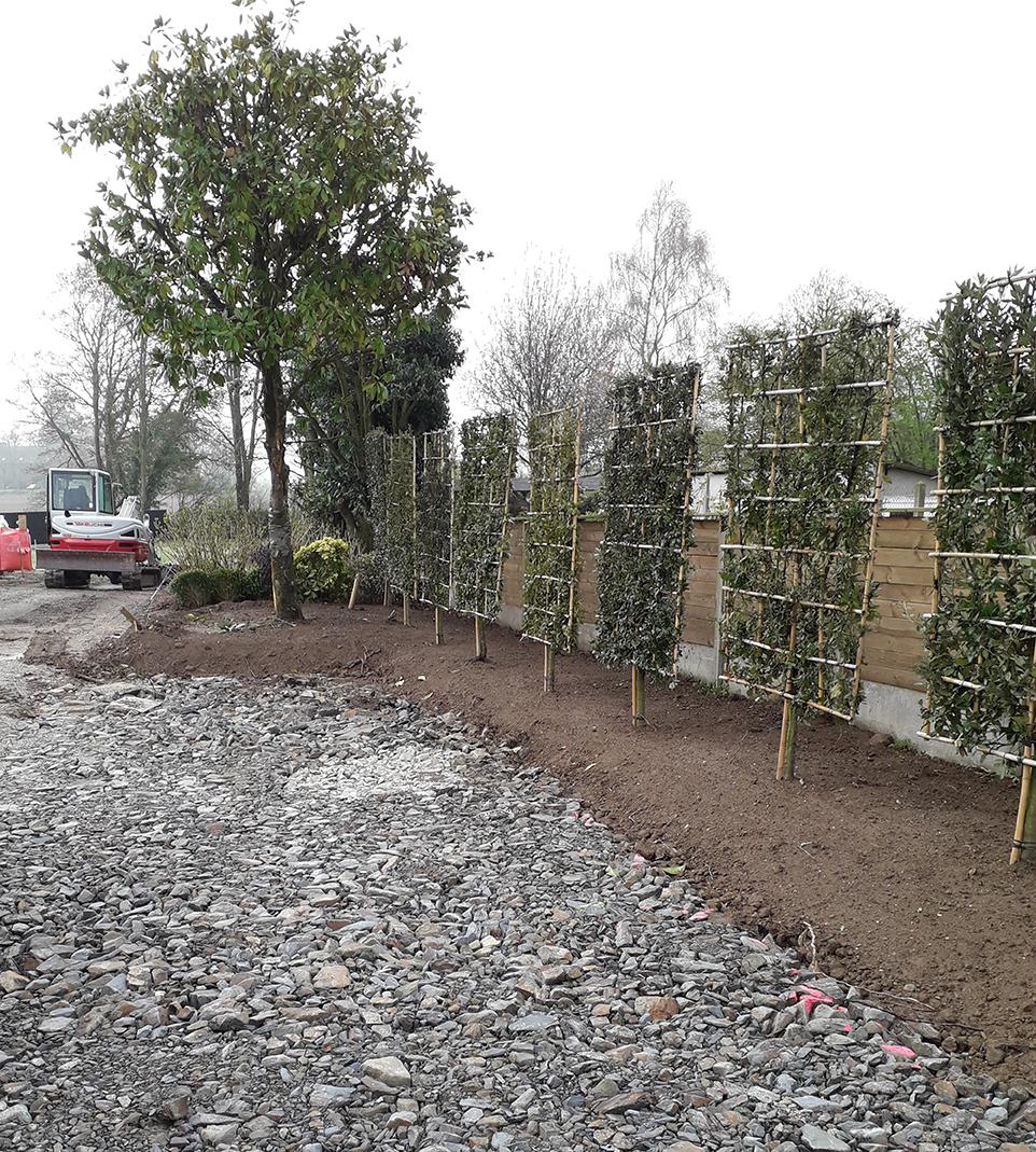 chantier en construction . brise-vue végétal . Jardins des 4 Saisons. Guer, Ploërmel, Redon, Plélan-Le-Grand, Maure de Bretagne