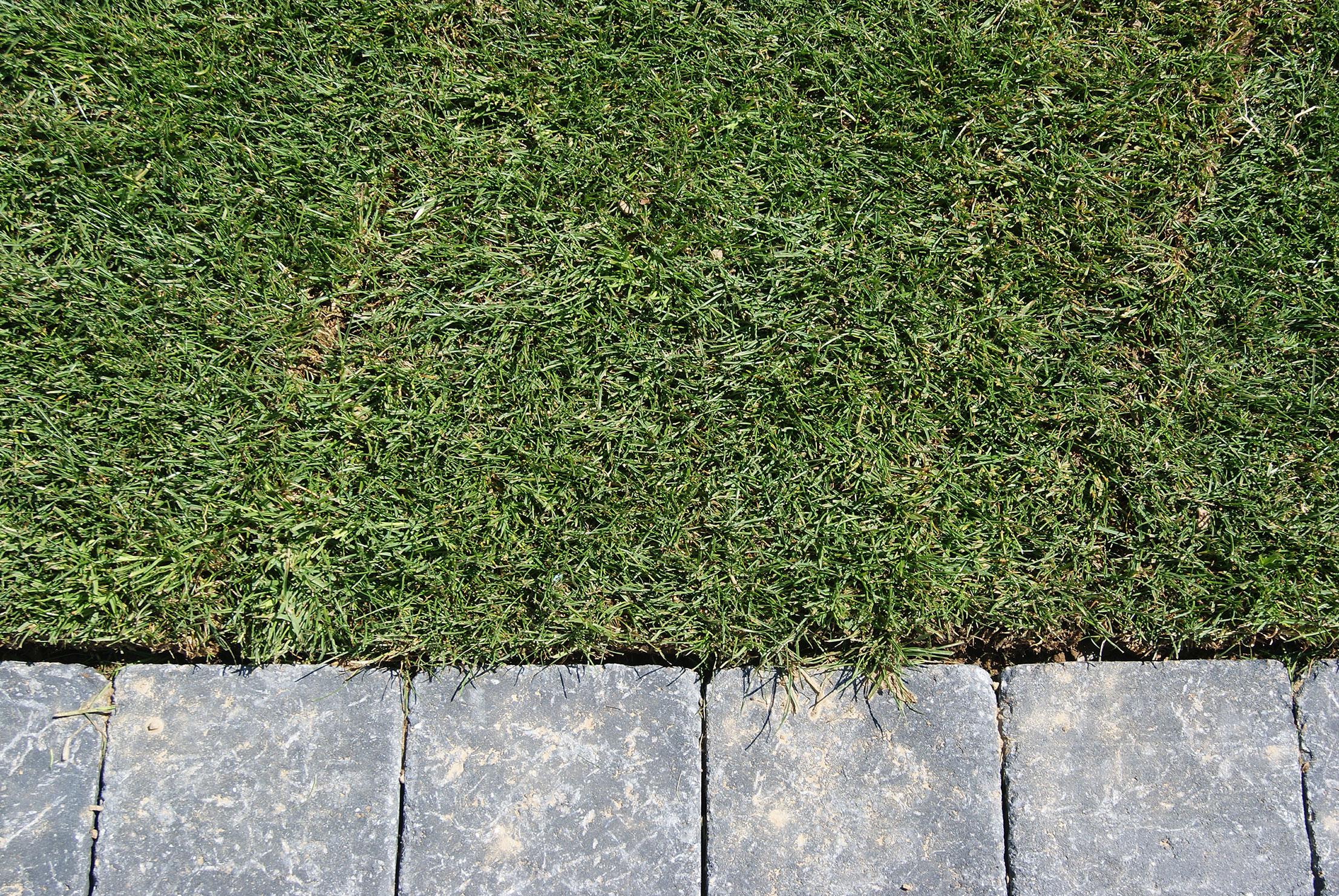 Gazon placage. chainage. Jardins des 4 Saisons. Guer, Ploërmel, Redon, Plélan-Le-Grand, Maure de Bretagne
